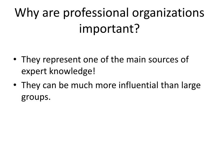 Why are professional organizations important?
