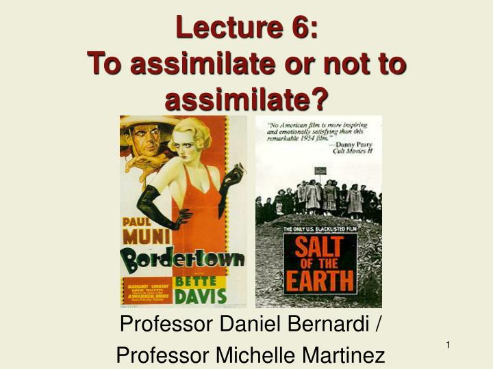 Lecture 6 to assimilate or not to assimilate