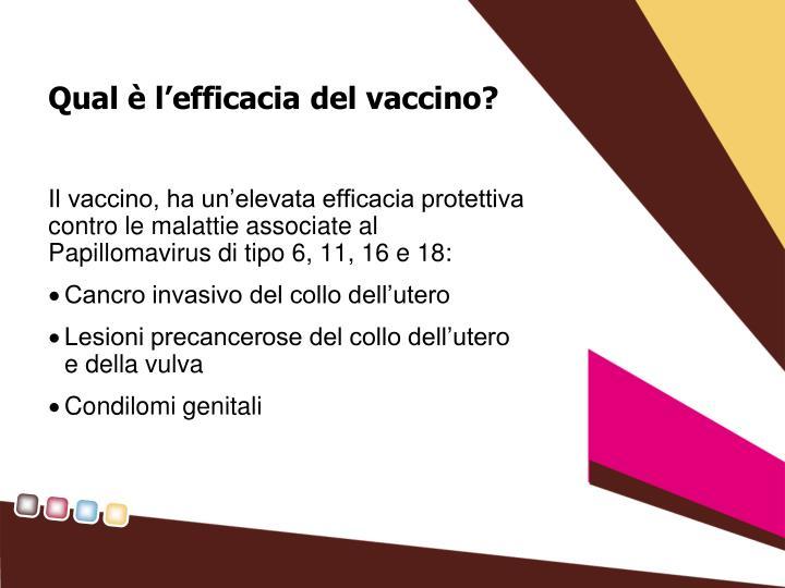 Qual è l'efficacia del vaccino?