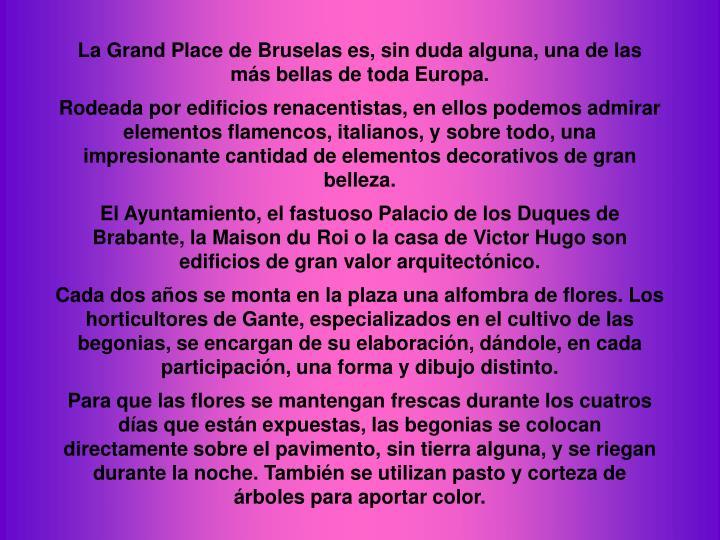 La Grand Place de Bruselas es, sin duda alguna, una de las más bellas de toda Europa.