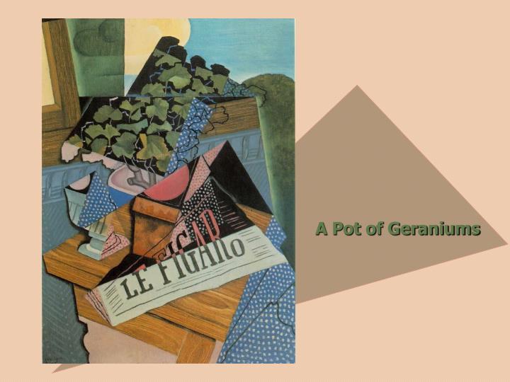 A Pot of Geraniums
