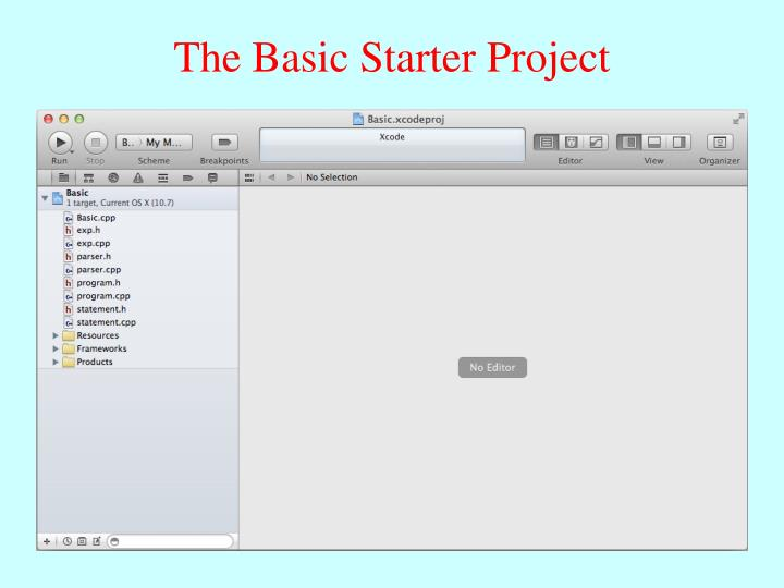 The Basic Starter Project