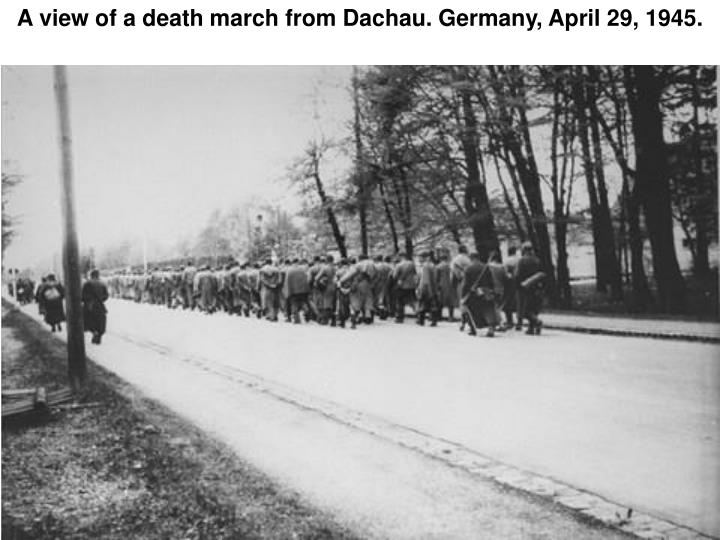A view of a death march from Dachau. Germany, April 29, 1945.
