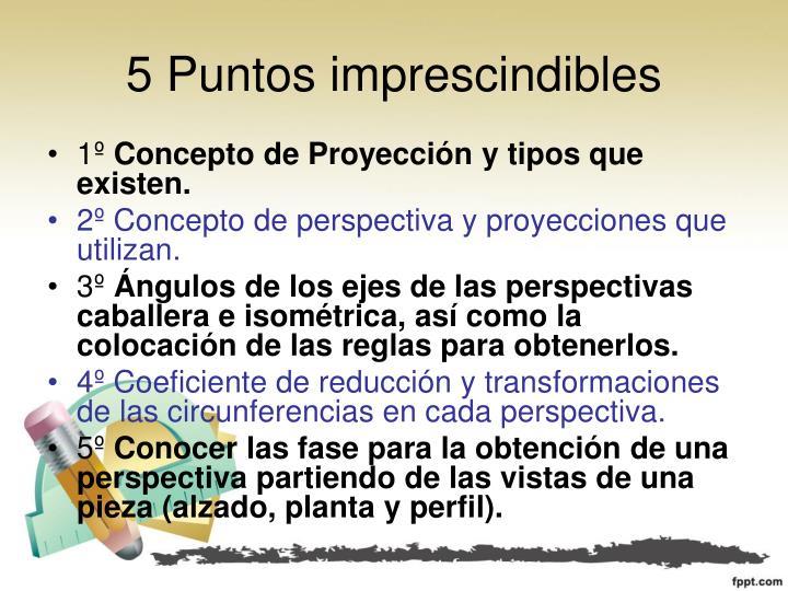 5 Puntos imprescindibles