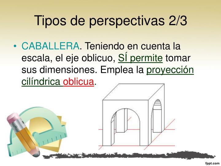 Tipos de perspectivas 2/3