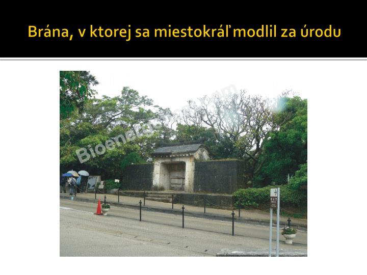 Brána, v ktorej sa