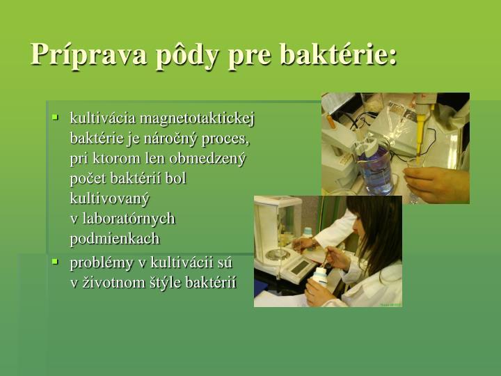 Príprava pôdy pre baktérie: