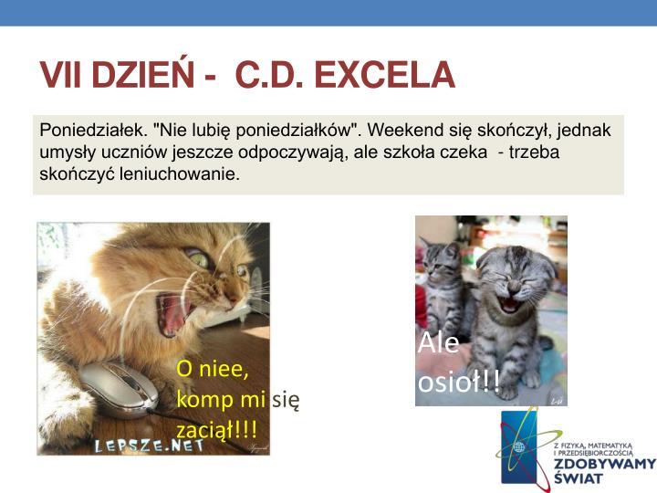 VII dzień -  c.d. Excela