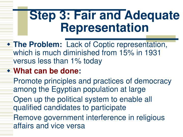 Step 3: Fair and Adequate Representation