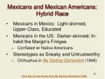 mexicans and mexican americans hybrid race