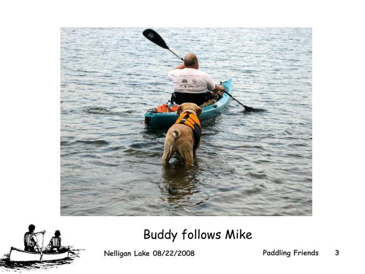 Buddy follows Mike