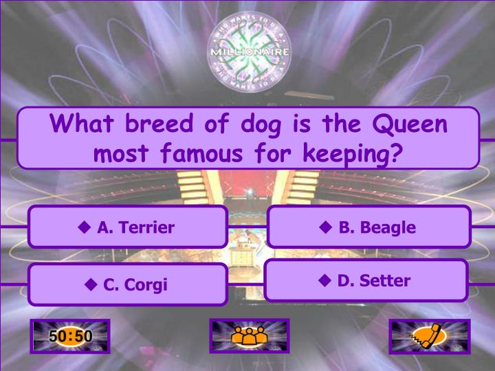 What breed of dog is the Queen most famous for keeping?