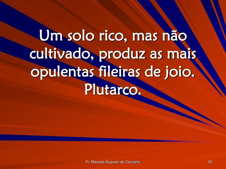 Um solo rico, mas não cultivado, produz as mais opulentas fileiras de joio. Plutarco.