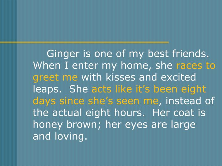 Ginger is one of my best friends.  When I enter my home, she