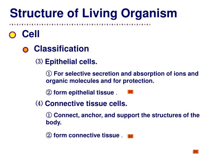 Structure of Living Organism