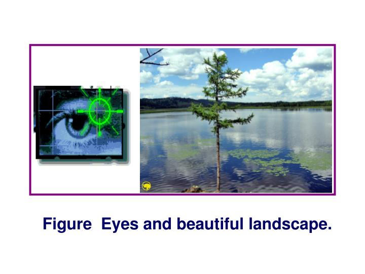 Figure  Eyes and beautiful landscape.