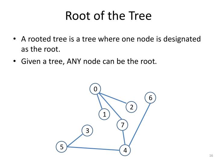 Root of the