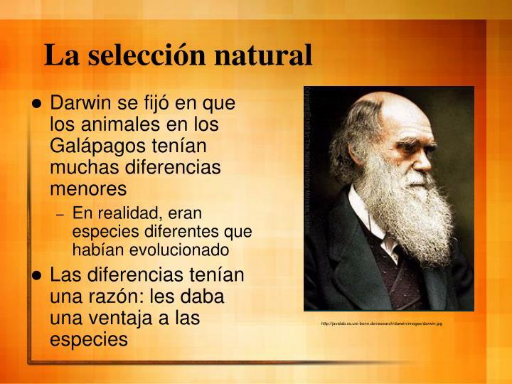 La selección natural