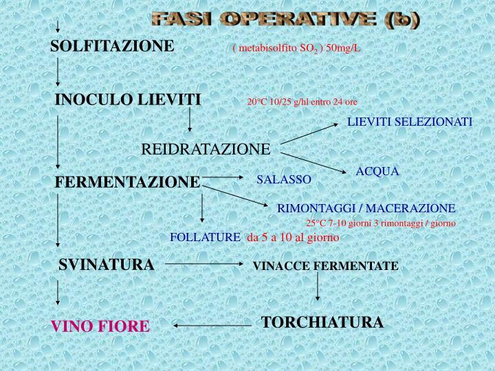 FASI OPERATIVE (b)
