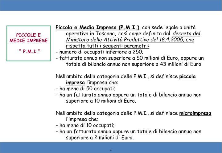 Piccola e Media Impresa (P.M.I.)