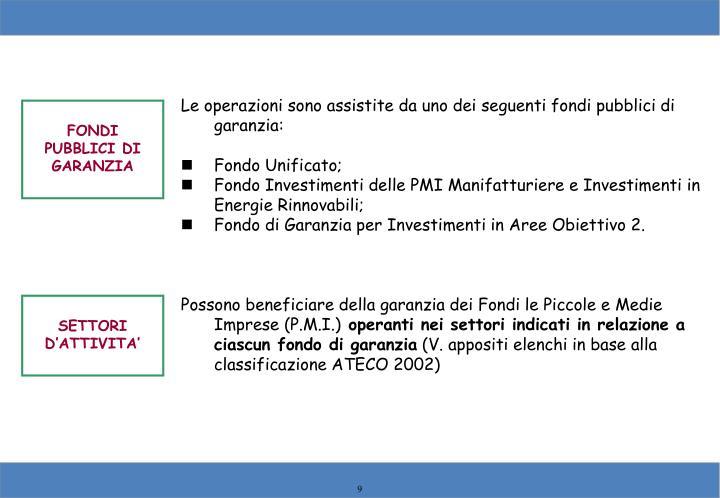 Le operazioni sono assistite da uno dei seguenti fondi pubblici di garanzia: