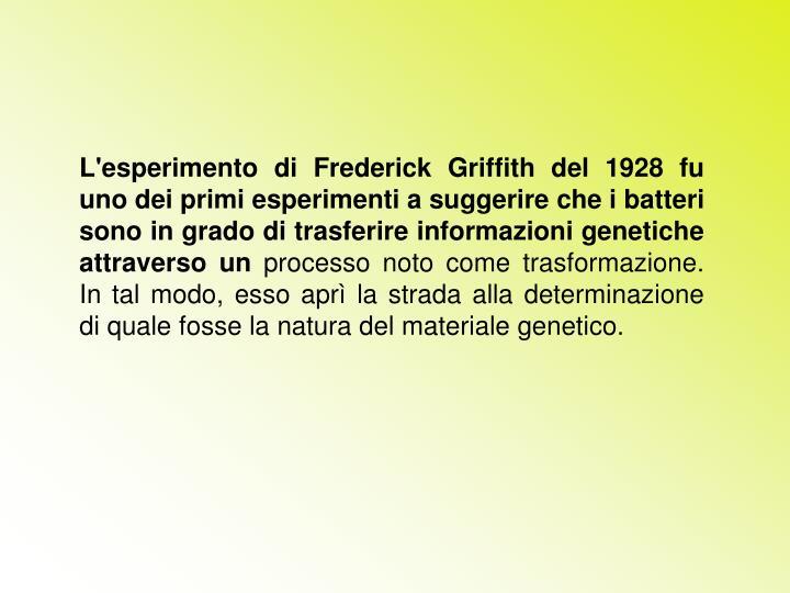 L'esperimento di Frederick Griffith del 1928 fu uno dei primi esperimenti a suggerire che i batteri sono in grado di trasferire informazioni genetiche attraverso un