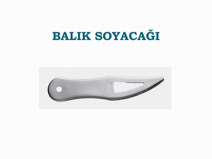 BALIK SOYACAĞI