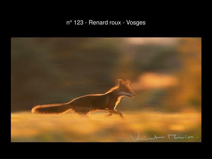n° 123 - Renard roux - Vosges