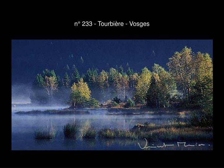 n° 233 - Tourbière - Vosges