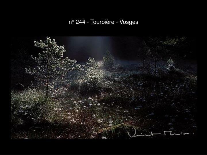 n° 244 - Tourbière - Vosges
