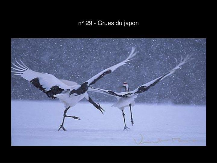 n° 29 - Grues du japon