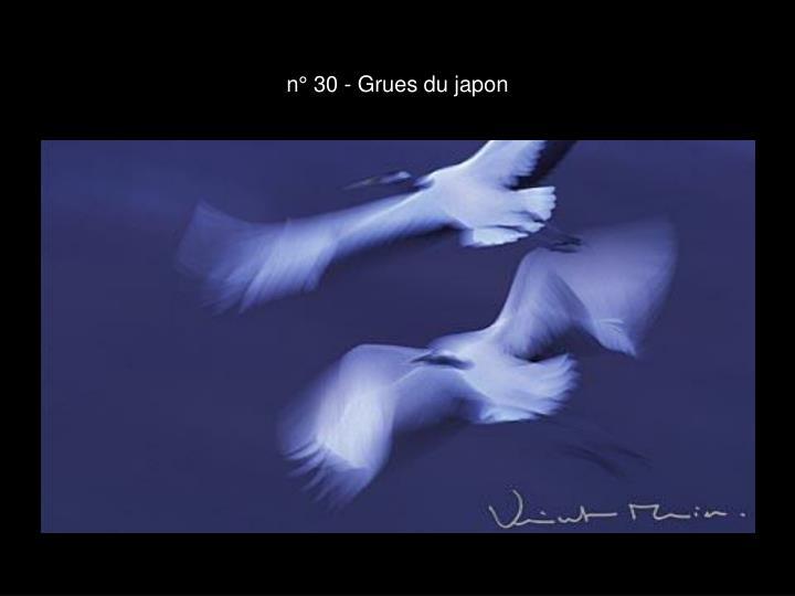 n° 30 - Grues du japon