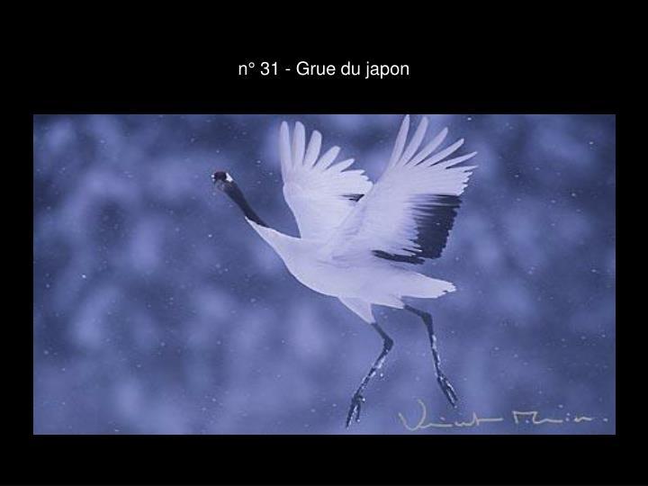 n° 31 - Grue du japon