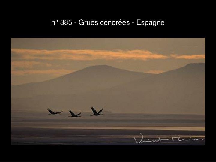 n° 385 - Grues cendrées - Espagne