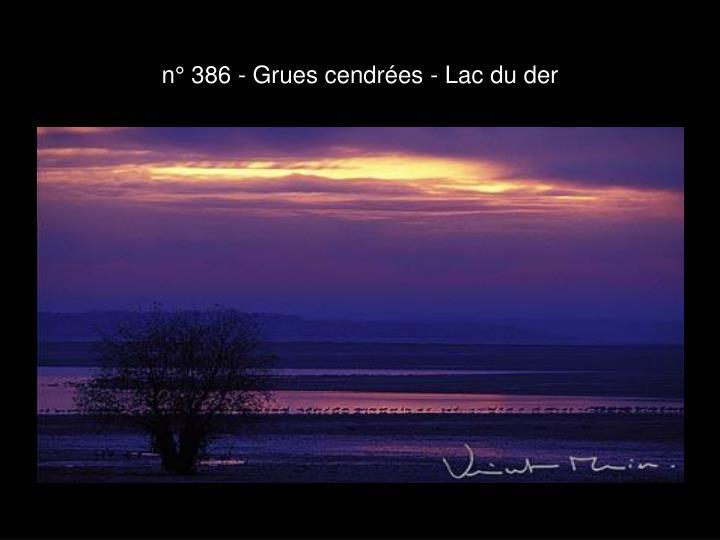 n° 386 - Grues cendrées - Lac du der