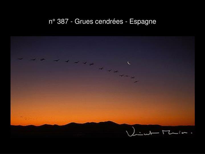 n° 387 - Grues cendrées - Espagne