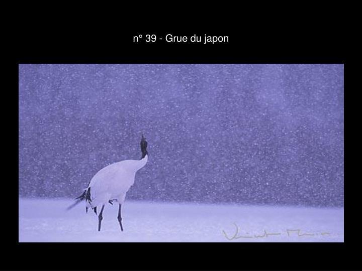 n° 39 - Grue du japon