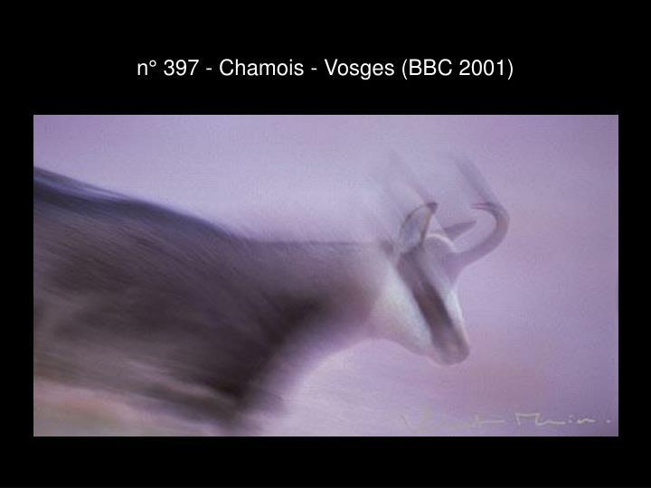 n° 397 - Chamois - Vosges (BBC 2001)