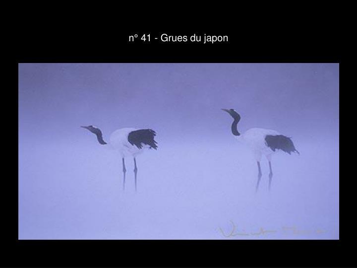n° 41 - Grues du japon