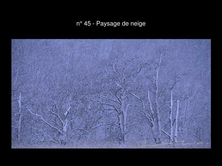 n° 45 - Paysage de neige