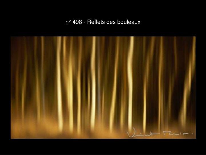 n° 498 - Reflets des bouleaux