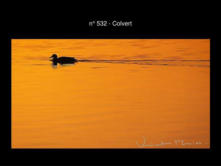 n° 532 - Colvert