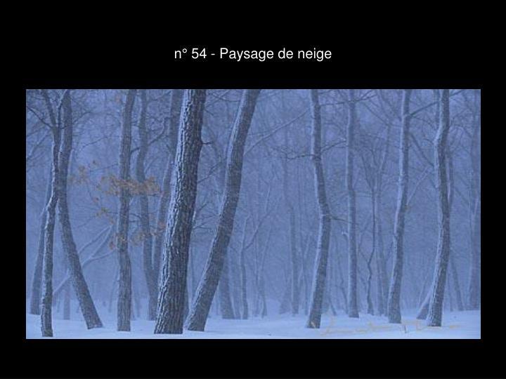 n° 54 - Paysage de neige