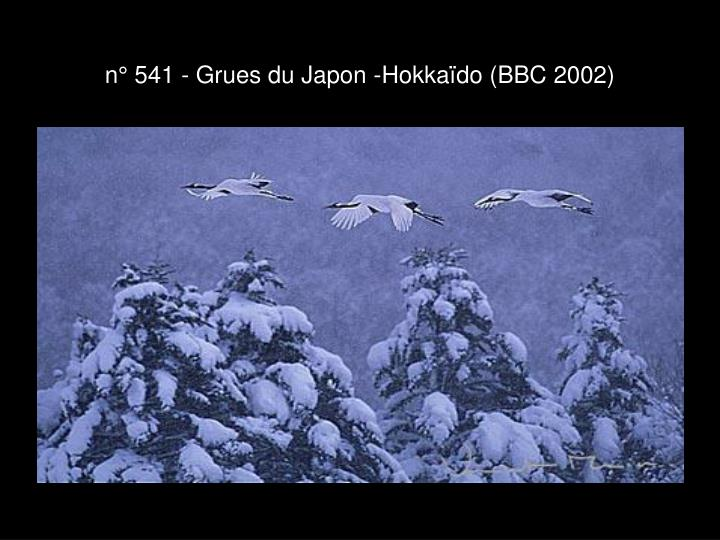 n° 541 - Grues du Japon -Hokkaïdo (BBC 2002)