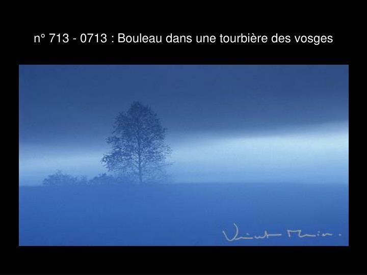 n° 713 - 0713 : Bouleau dans une tourbière des vosges