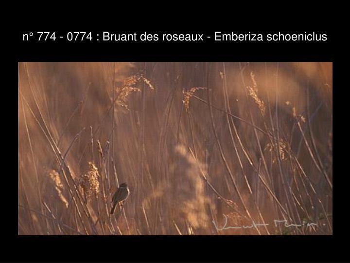 n° 774 - 0774 : Bruant des roseaux - Emberiza schoeniclus