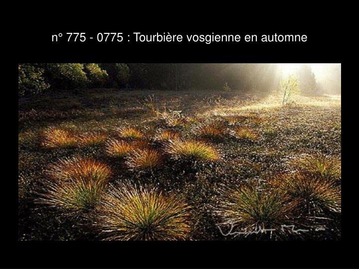 n° 775 - 0775 : Tourbière vosgienne en automne