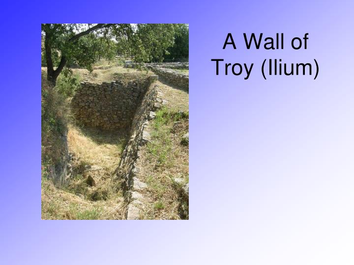 A Wall of Troy (Ilium)