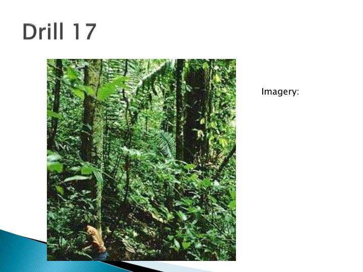 Drill 17