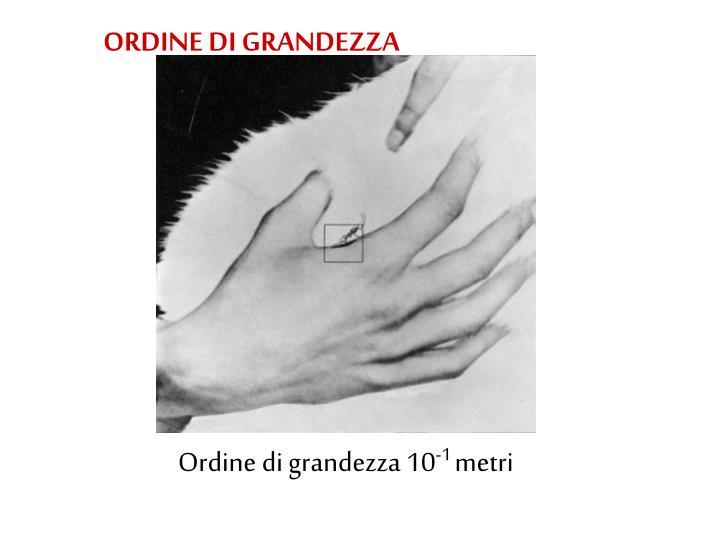 ORDINE DI GRANDEZZA